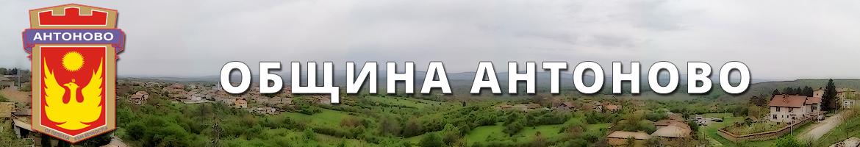 Община Антоново